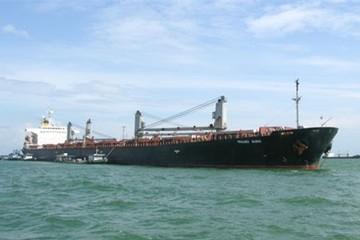 Vinalines: Xử lý ngay 3 tàu trong tháng 12 để trả nợ vay