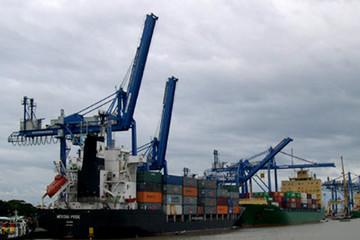 Cảng Đình Vũ hoàn thành kế hoạch doanh thu sau 11 tháng