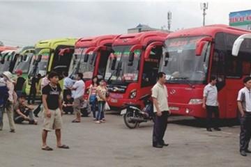 Giá cước vận tải có thể giảm đến 20%