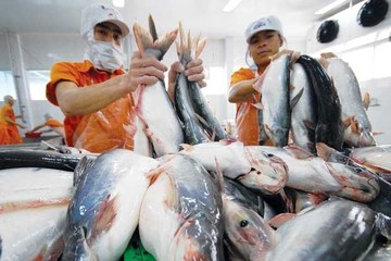 Tháng 1 xuất khẩu thủy sản bất ngờ giảm, chỉ đạt 412 triệu USD
