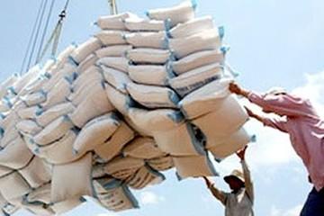 Xuất khẩu gạo tháng 1/2015 giảm cả lượng và giá trị