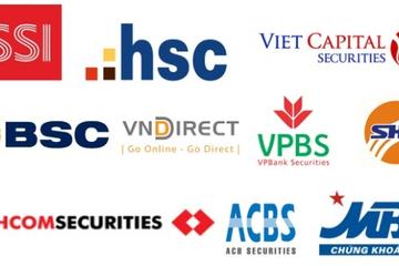 20 công ty chứng khoán lớn nhất kiếm tiền từ những nguồn nào?