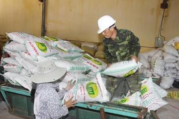 Xuất dự trữ quốc gia hơn 1.600 tấn hạt giống cây trồng năm 2015