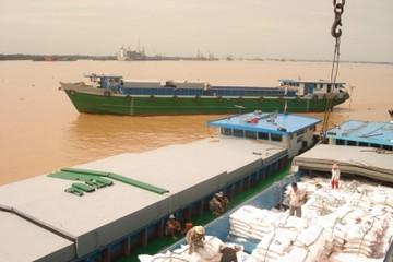 Xây dựng thương hiệu cho hạt gạo Việt Nam