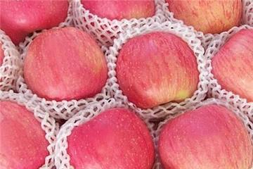 Kinh nghiệm chọn hoa quả ngon và an toàn dịp Tết