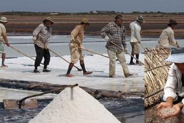 Vòng xoáy luẩn quẩn của ngành muối