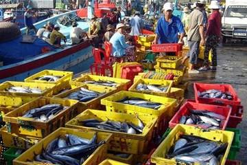 Xuất khẩu thủy sản giảm 2 tháng liên tiếp, đạt 907 triệu USD