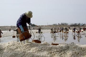 Sản xuất muối trong nước giảm, muối nhập khẩu tăng trong tháng 2