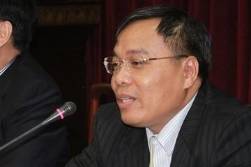 Ông Đinh Quang Tri, Phó TGĐ EVN: