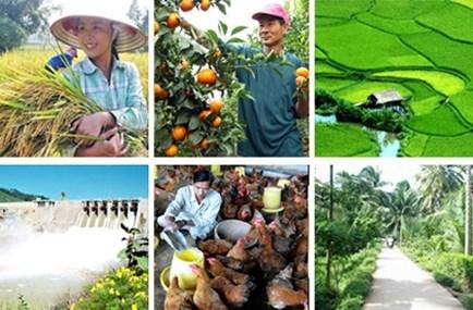 VinGroup đề xuất đầu tư các dự án nông nghiệp quy mô lớn tại Quảng Ninh