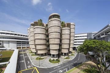 Singapore xây dựng tòa nhà hình củ cải vàng