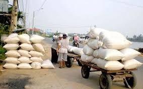Xuất khẩu gạo sôi động nhờ Trung Quốc mua nhiều