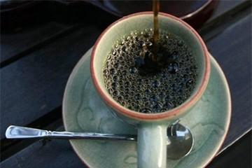 Thưởng thức cà phê phân voi giá hàng triệu đồng