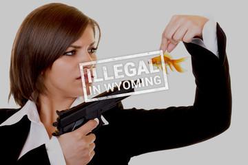 Những điều luật kỳ cục ở Mỹ