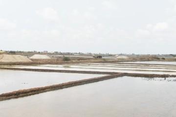 Bạc Liêu: Mặn đắng bán 10kg muối chưa mua nổi tô phở