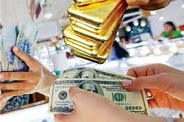 Thiếu biện pháp phòng ngừa tỷ giá biến động