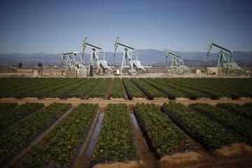 Dầu Brent tăng do đánh bom ở Yemen, dầu WTI giảm do dầu lưu kho của Mỹ tăng