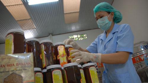 90% mật ong xuất khẩu vào thị trường Mỹ