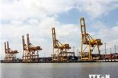 Tăng khai thác cảng, quý I GMD lãi ròng hợp nhất hơn 80 tỷ đồng, tăng 77% cùng kỳ