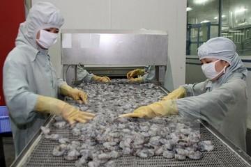 Vasep: VKFTA là cơ hội cho thủy sản Việt Nam
