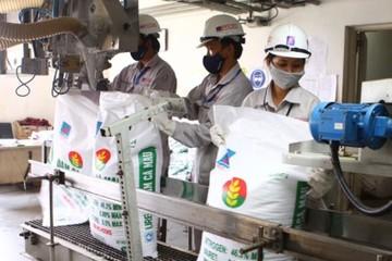 Sản xuất phân bón 5 tháng ổn định, nhập khẩu tăng