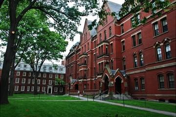 Harvard, Stanford giàu cỡ nào?