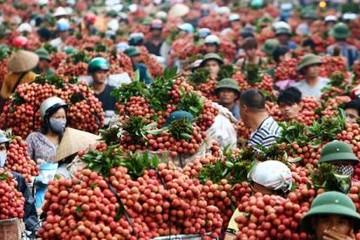 Trung Quốc vẫn là thị trường quan trọng của nông sản Việt Nam