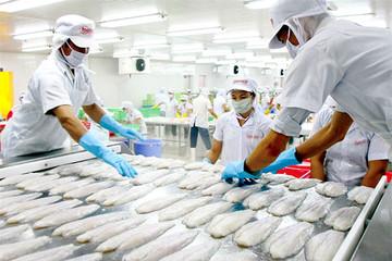 FTA VN-Liên minh KT Á Âu: Cắt, giảm 9.927 dòng thuế, cơ hội lớn cho DN Việt
