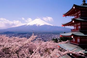 [Infographic] 11 phong tục của Nhật Bản khiến người nước ngoài bất ngờ