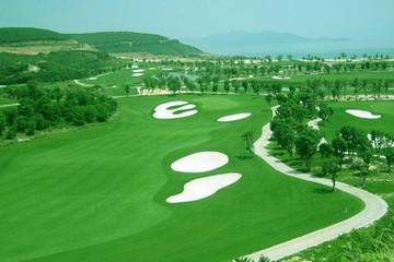 Quảng Bình thông tin về việc xây 10 sân golf