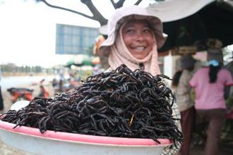 Campuchia và đặc sản côn trùng chiên giòn