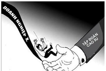 Ai gánh lỗ cho công ty Tài chính cao su?