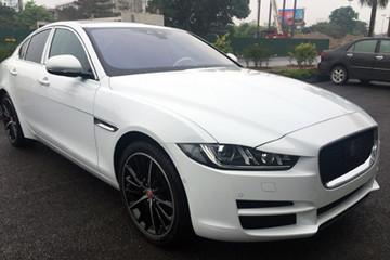 Jaguar đưa xe giá rẻ về Việt Nam