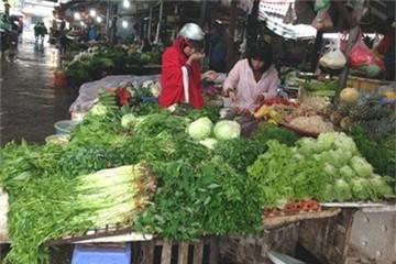 Giật mình kết quả xét nghiệm hóa chất trong rau ở chợ