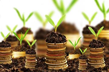 [Góc nhìn môi giới] Tâm lý đầu tư trong thời kỳ hỗn loạn