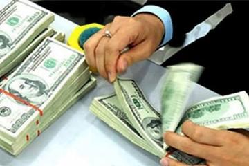 Không được dùng vốn vay ngoại tệ để đầu tư gián tiếp ra nước ngoài