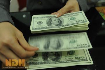 Tỷ giá ổn định sau ngày công bố tỷ giá trung tâm