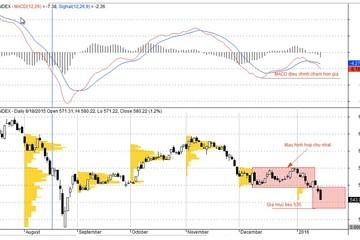 PTKT tuần (18/01-22/01): Diễn biến quá đà về giá