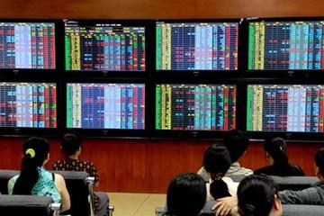 Thị trường đang lo ngại thái quá?