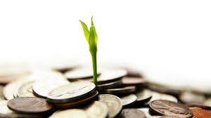 LAF: Lợi nhuận quý IV tăng vọt, cán đích kế hoạch năm