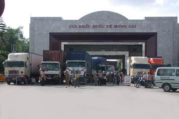 Thương mại Việt Nam đang phụ thuộc vào Trung Quốc đến mức nào?