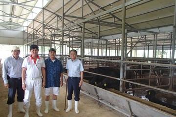 Doanh nhân Đặng Văn Thành: Đại gia ngân hàng duyên nợ với... bò Kobe
