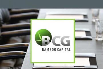 Bamboo Capital: Vốn điều lệ sẽ vượt 1.000 tỷ đồng