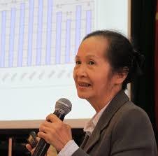 Bà Phạm Chi Lan: DN tập trung chạy quan hệ lấy ưu đãi hơn nâng cao năng lực cạnh tranh