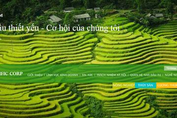 BĐS Sài gòn Đan Linh đăng ký mua 350.000 cổ phiếu PAN