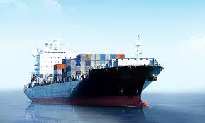ĐHCD SFI : Kế hoạch kinh doanh thận trọng, tập trung nâng cấp chất lượng dịch vụ logistics