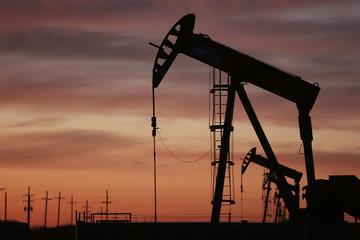 Giá dầu của Mỹ lập đỉnh 7 tháng do đồn đoán dầu lưu kho giảm