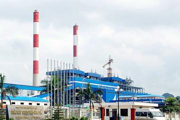 Nhiệt điện Cẩm Phả lỗ 274 tỷ đồng năm 2015, được chấp thuận lên sàn Upcom