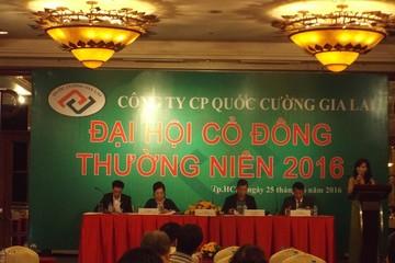 ĐHCĐ QCG: Chi khoảng 900 tỷ đồng mua dự án của HAGL tại Đà Nẵng