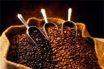 """Giá cà phê trong nước chạm """"đỉnh"""""""